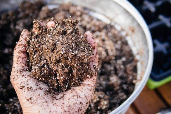Uses and relevance of soil mix